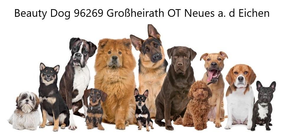 Beauty Dog Coburg auf der Ernstfarm